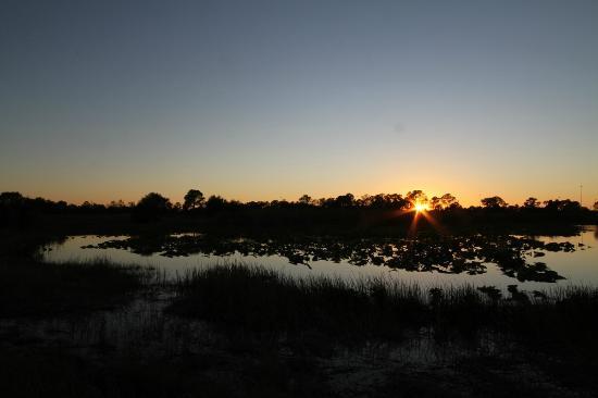 Fred C. Babcock-Cecil M. Webb Wildlife Management Area: Babcock-webb at dusk