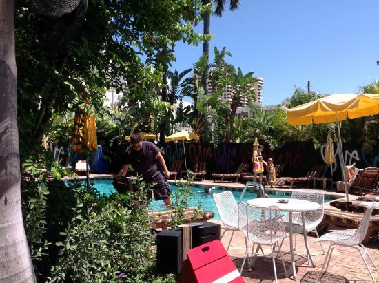 Freehand Miami: Jardim e Piscina