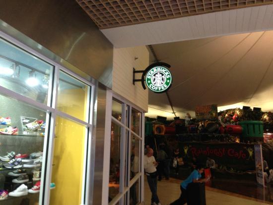 Starbucks: Foto da fachada