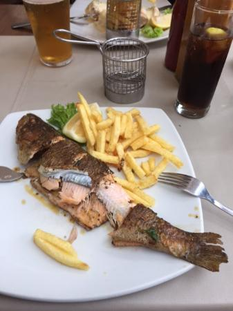 Pappas on the Square: Trout fish - Super delicious