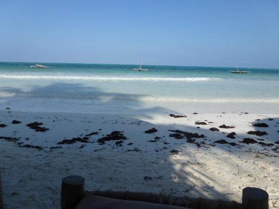 Tamani Villas : stranden