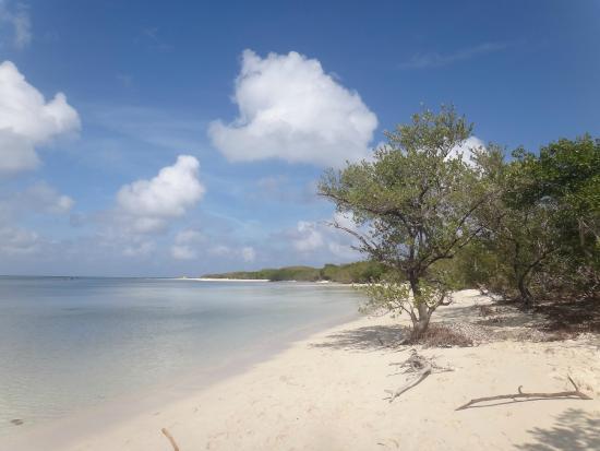 Great beach picture of melia jardines del rey cayo coco for Jardines del rey