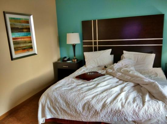 Hampton Inn Austin/Oak Hill: suite