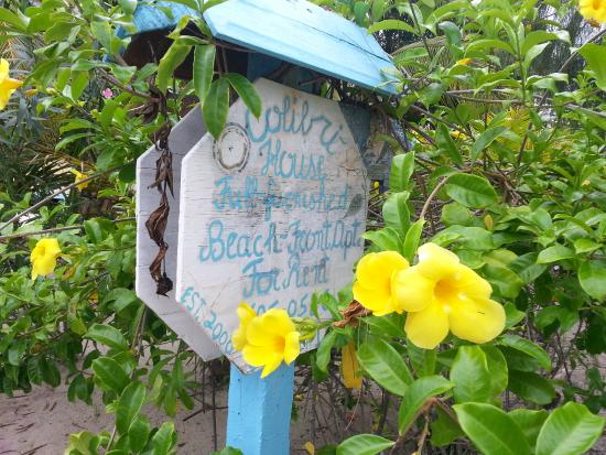 Colibri House: Sign off the Placencia sidewalk