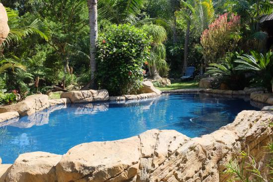 Littlewood Garden: Garten mit Pool
