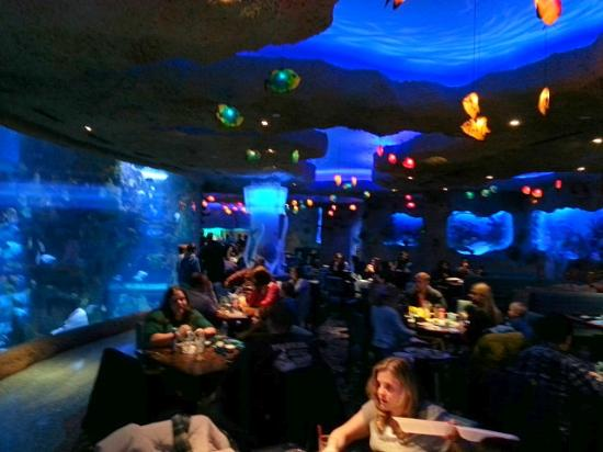 Hotels Near Aquarium Restaurant In Nashville Tn