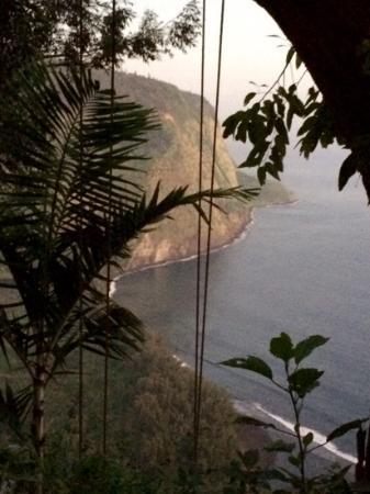 Waipio Rim: Balcony view