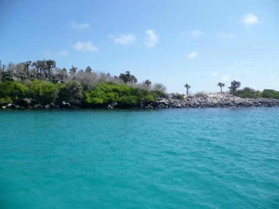 Santa Fe Island 2017 Best Of Santa Fe Island Tourism Tripadvisor