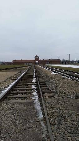 Krakow Discovery - Auschwitz Tours : Birkenau