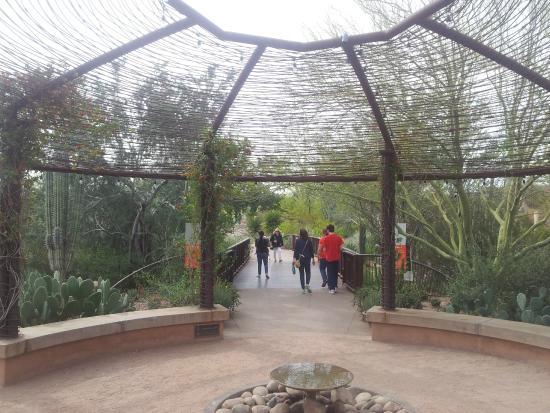 The Entrance To The Desert Garden Picture Of Desert Botanical Garden Phoenix Tripadvisor