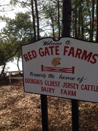 Picture of Red Gate Campground and RV Resort, Savannah  TripAdvisor
