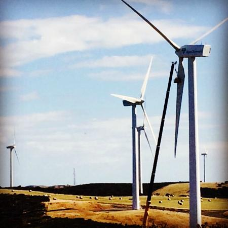 Woolnorth Tours: Wind farm maintenance
