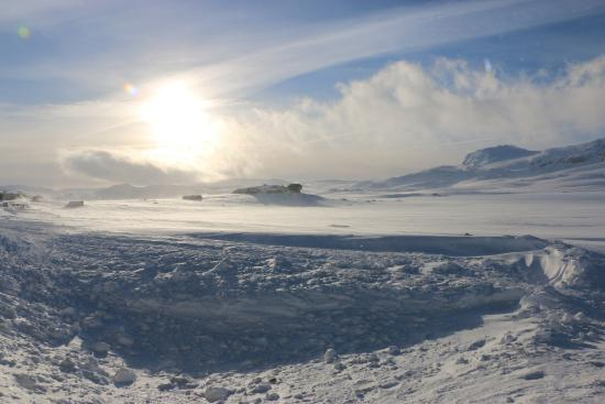 Finse 1222: Europe's most southerly polar environment