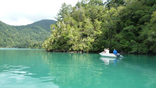 Waterways Boating Safaris: Beautiful Marlborough sounds- checking out the sting rays feeding