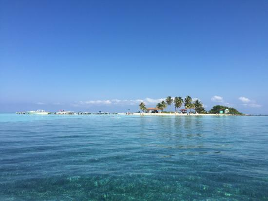 Goff's Caye : View of the island from boat.