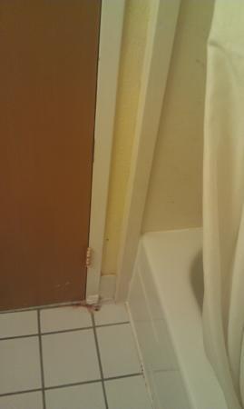 Baymont Inn & Suites Florida Mall/: Uncomfortably old, unclean-feeling bathroom