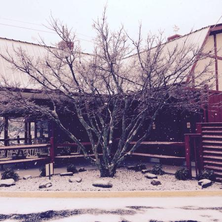2015 - Picture of Dairy Barn, Athens - Tripadvisor