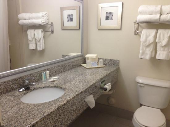 Fort Lauderdale Airport / Cruise Port Inn: Banheiro