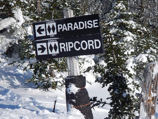 Sugarbush Mountain Ski Resort: No Easy Escape from Here
