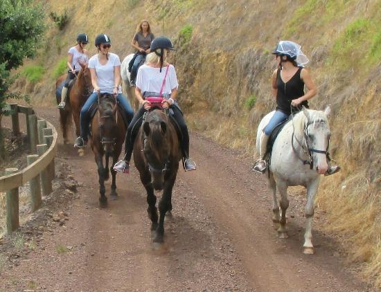 Waiheke-eiland, Nieuw-Zeeland: Hen's party to Passage Rock