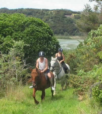 Waiheke Island, Neuseeland: Riding the fire break