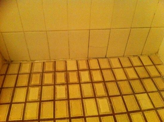 Princess Palm On The Beach Apartments Gold Coast: Cracked and dirty bathroom tiles