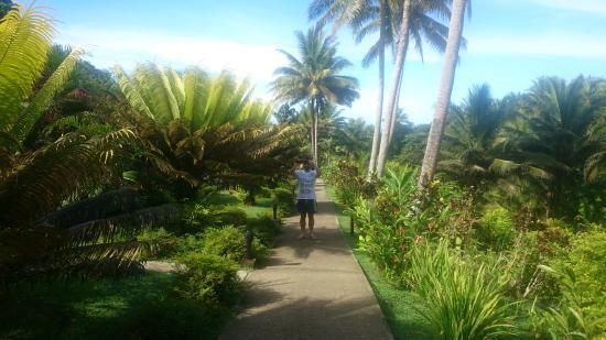 Wellesley Resort Fiji: The walk to the beach - not too shabby.