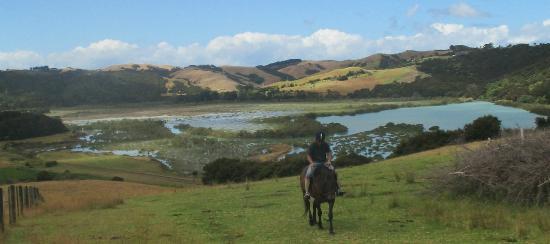 Isla Waiheke, Nueva Zelanda: Te Matuku Tour