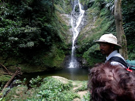 Courtyard by Marriott Port of Spain: Rincon falls with Ivor