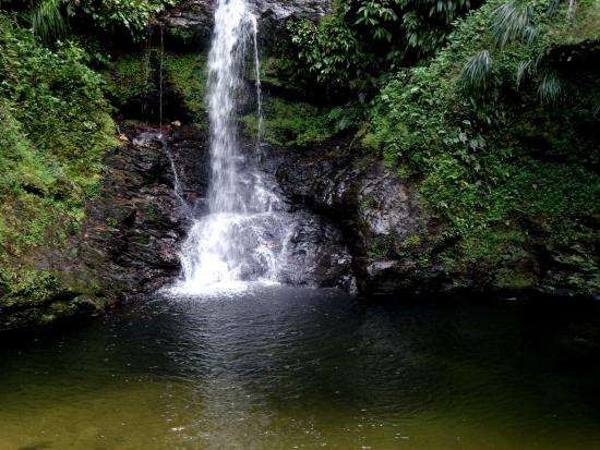 Courtyard by Marriott Port of Spain: Rincon falls