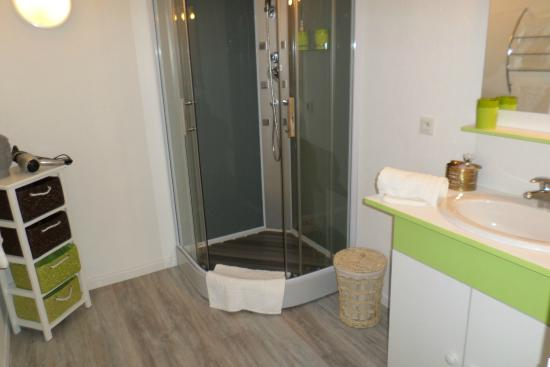 Corpe, France: Chambre Andréane : salle d'eau avec douche Multijets