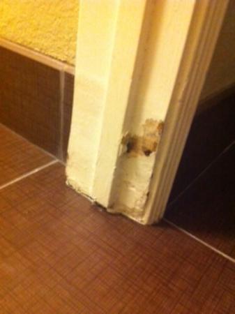 Staybridge Suites San Diego Rancho Bernardo Area: Mold on the door