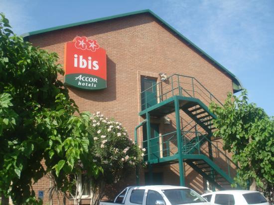 Ibis Mendoza: ibis
