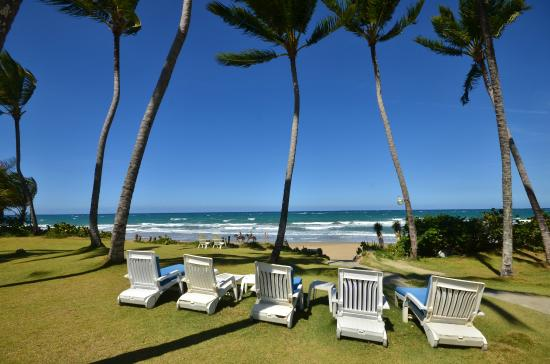 Cabarete East Beachfront Resort: Lawn chairs waiting to be used