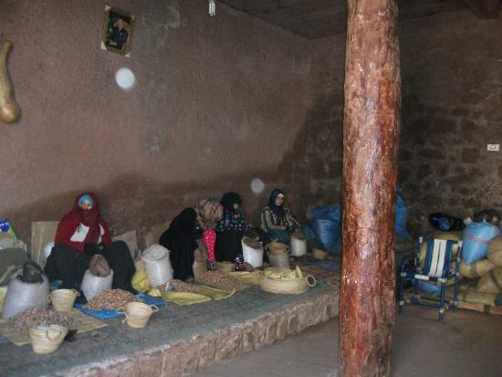 Sahara Revelation: Cosmetics oil in progress