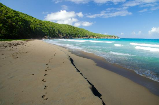 Turtle Bay Resort Strand