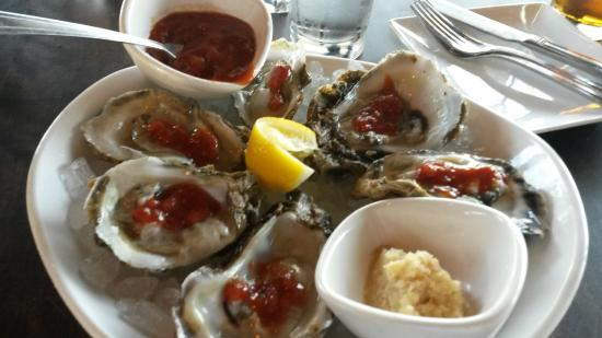 River Rocks: Oysters..