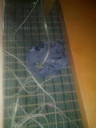 Winter Haven Gardens Inn & Banquet Center: panties left behind
