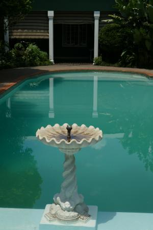 Marben Manor Guest House: The lovely pool