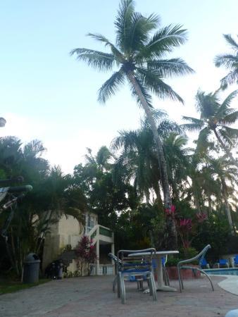 Hotel Kaoba: около бассейна