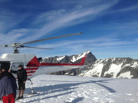 Alpine Adventures: He helped us book a Helicopter Tour of the glaciers and of Milford Sound
