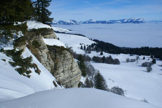 La Taiga: vue sur Les Alpes