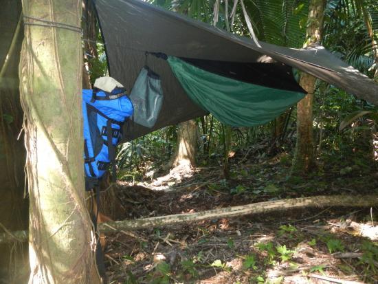 Yaxche Jungle Camp: Camp