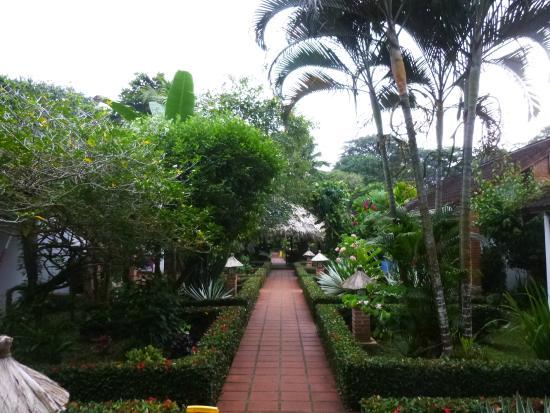 Hotel Escape Caribeno: Jardín