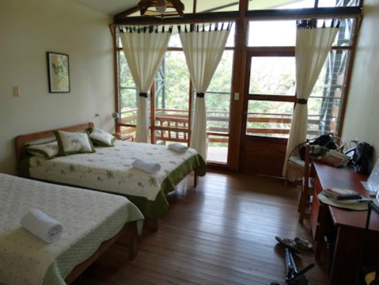 Las Cruces Biological Station: Spacious bedroom with view out to gardens