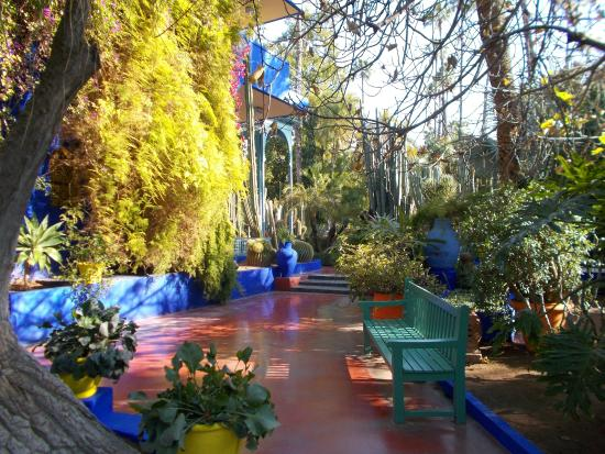 Jardin majorelle gardens see more photos