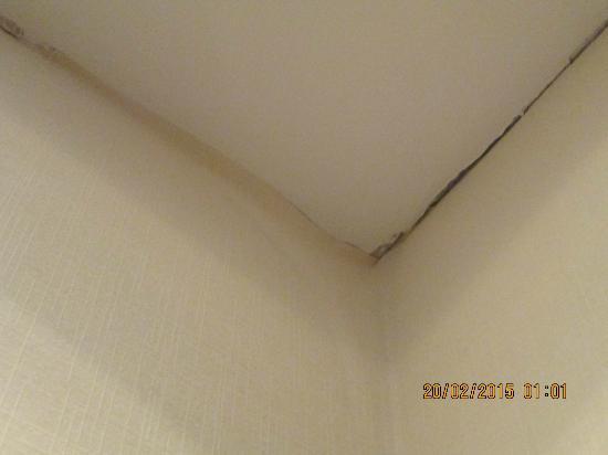 Expo Hotel : Стены/Потолок