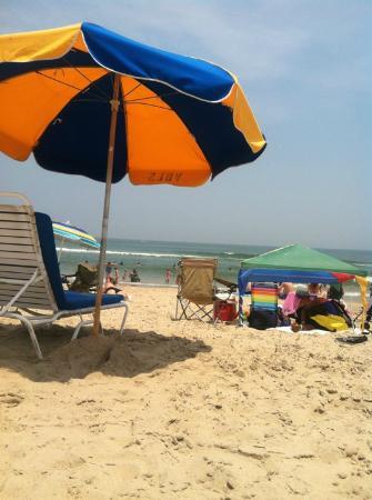 Capes Hotel : Beach