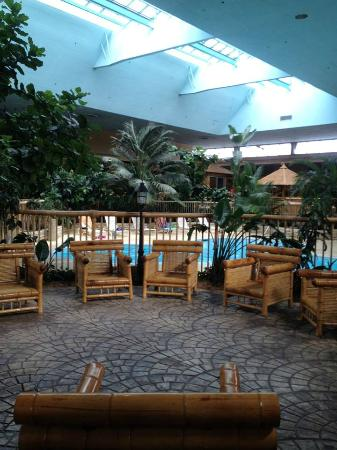 Holiday Inn Rolling Meadows - Schaumburg Area: Beautiful Atrium.  Pool in background