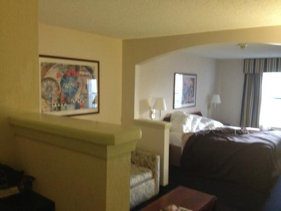 Magnuson Hotel Park Suites : Roomy but nothing special